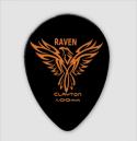 Black Raven Teardrop